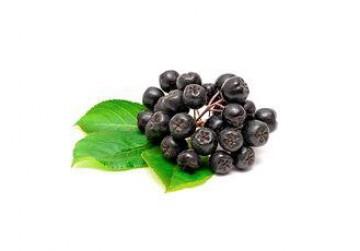 Сухой водорастворимый напиток (экстракт) - Сибирские ягоды
